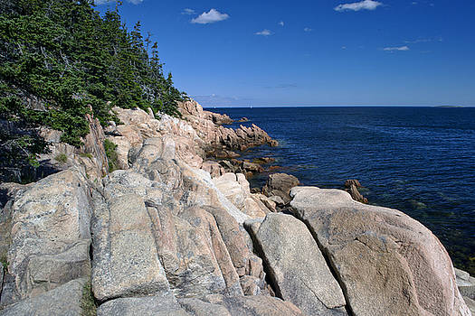 Rugged Coast Of Maine by David Hintz