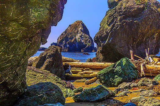Rugged Sonoma Coast by Garry Gay