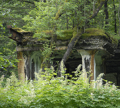 Ruins of Treadwell Mines by Jody Lovejoy