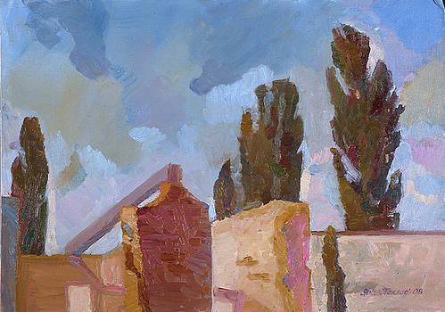 Ruins by Yana Poklad