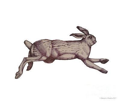 Running Bunny Jan 27 by Donna Huntriss