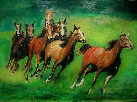 Running Free by Khalid Saeed