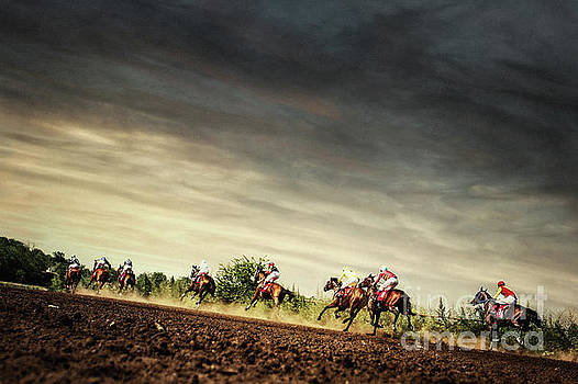 Running horses competition on the stormy sky by Dimitar Hristov