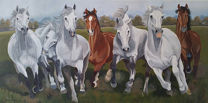 Running Horses by Laura Bolle
