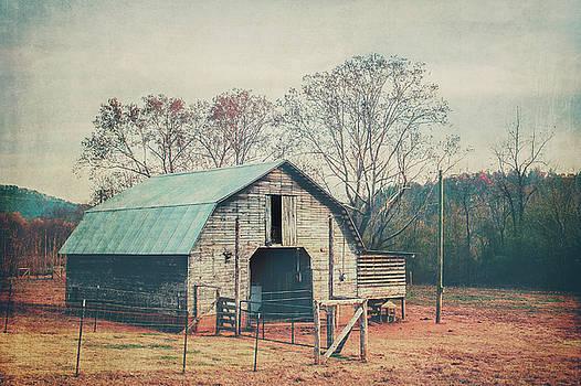 Rural Barn by Ray Devlin