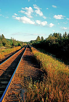 Rural country side train tracks by Peter Pauer