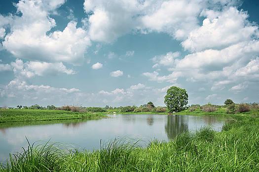 Rural pastorale. Horytsya, 2015. by Andriy Maykovskyi