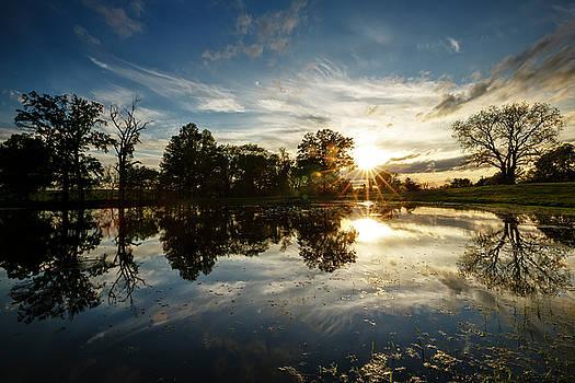 Rural Pond Sunburst by Notley Hawkins