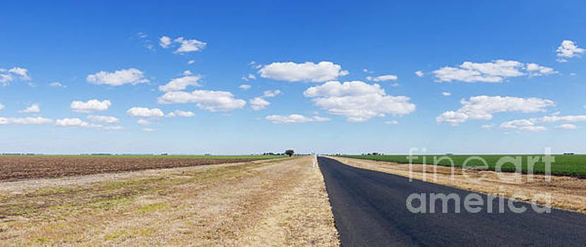 Rural road next to green early crop field under blue sky with cl by Carl Chapman
