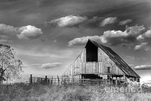 Rural by Thomas Danilovich