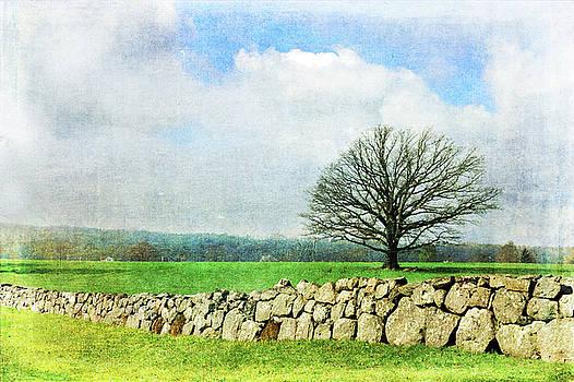 Rural Tranquility by Randi Grace Nilsberg