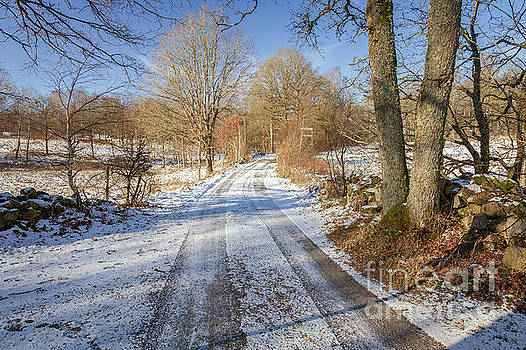 Rural winter road by Sophie McAulay