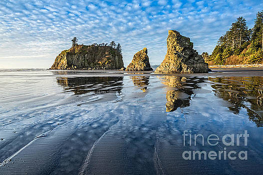 Jamie Pham - Ruby Beach Reflection
