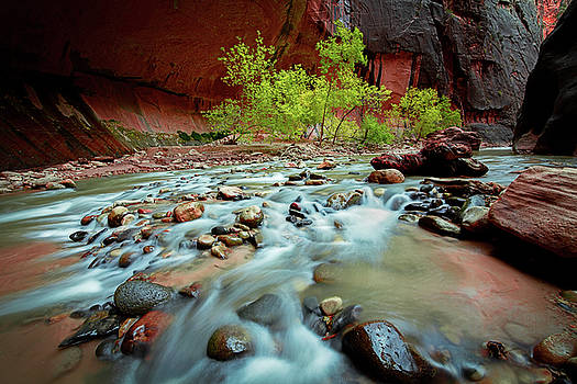 Rush At Narrows by Edgars Erglis
