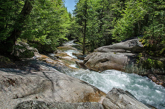 Rushing River by Donna Doherty