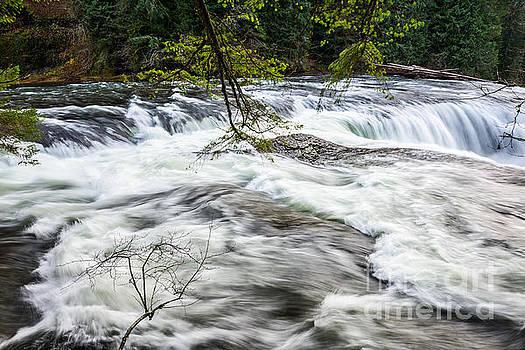 Jamie Pham - Rushing river