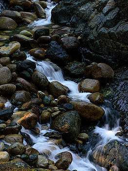 Rushing Stream by Keith Boone