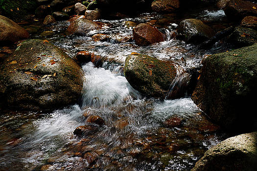 Rushing Water by Bill Morgenstern
