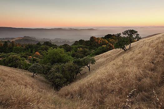 Russian Ridge in Summer by Matt Tilghman