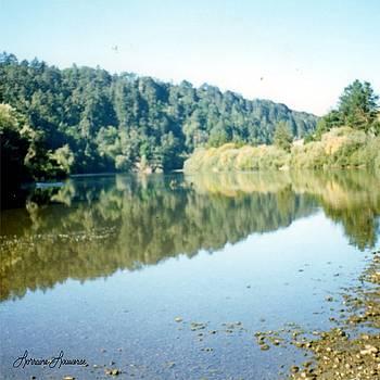 Russian River CA by Lorraine Louwerse
