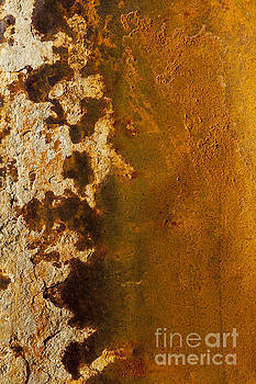 Rust Abstract of Organic Shapes by Sharon Foelz