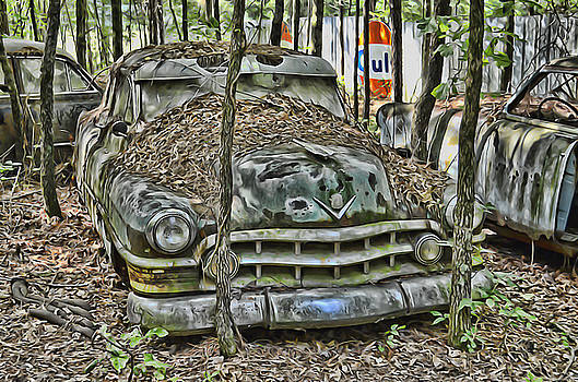Rusted Cadillac by Alice Link