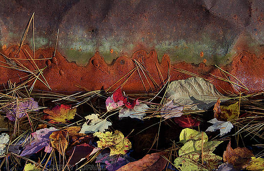 Rust by Jerry LoFaro