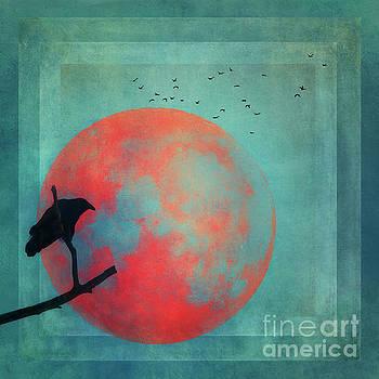 Rust Moon by Priska Wettstein