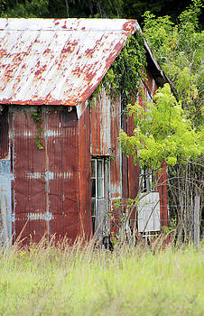 Rusted Barn by Rosalie Scanlon