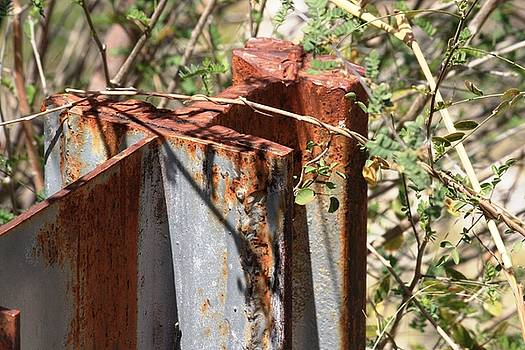 Rusted Guardrail at Sabino by Judy C Moses