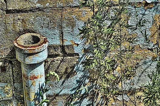 Rusted Pipe with Leaves by Mike McCool