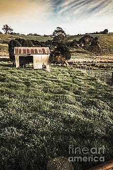 Rustic barn in lush green farmland by Jorgo Photography - Wall Art Gallery