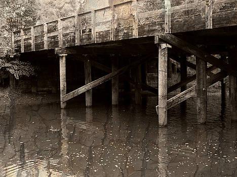 Emily Kelley - Rustic Bridge