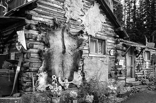 Rustic Cabin by Greg Grupenhof