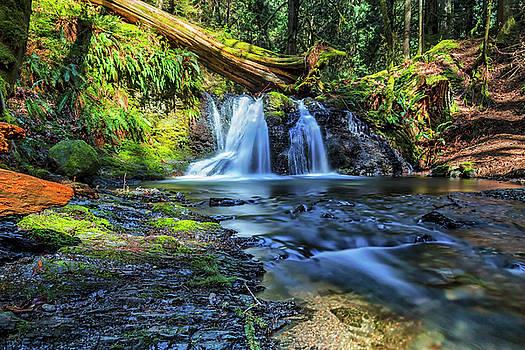 Rustic Falls by Thomas Ashcraft