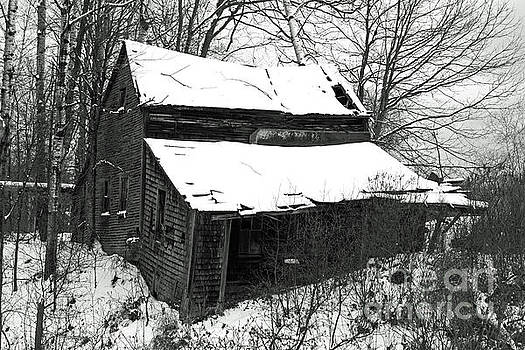 Rustic Home BW by Lloyd Alexander