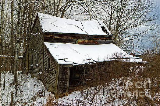 Rustic Home by Lloyd Alexander