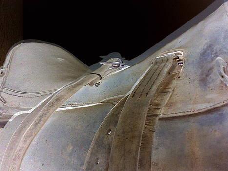 Rustic Horse Saddle by Orphelia Aristal
