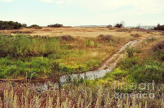 Rustic landscape by Remioni Art