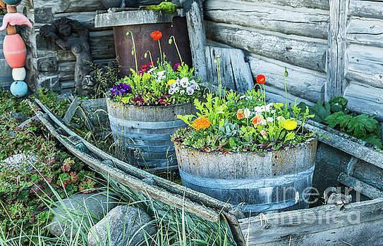 Rustic Nautical Garden by Edie Ann Mendenhall