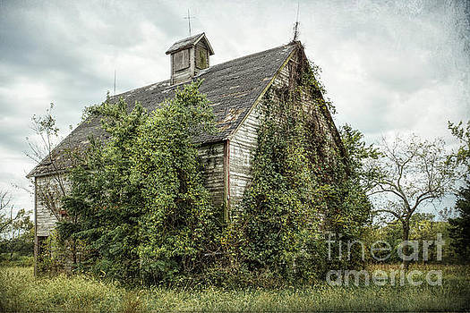 Rustic Old Barn by Lynn Sprowl