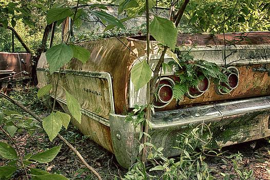 Rustic Rear by Travis Rogers