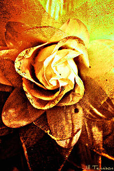 Rustic Rose by Jill Tennison