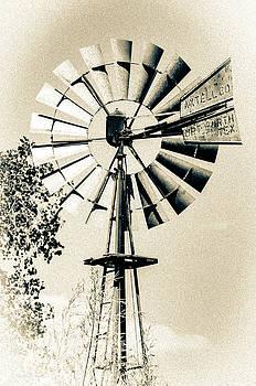 Rustic Windpump by Erich Grant