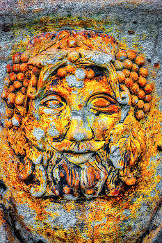 Rustic Wine Country Face by Garry Gay