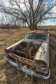 Rusty by Aaron J Groen