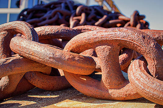 Rusty Anchor Chain at the Baltimore Museum of Industry by Bill Swartwout