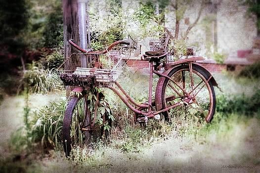 Rusty Bicycle Nostalgic Antique Bike by Melissa Bittinger