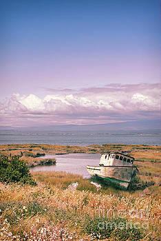 Jill Battaglia - Rusty Boat California Coast