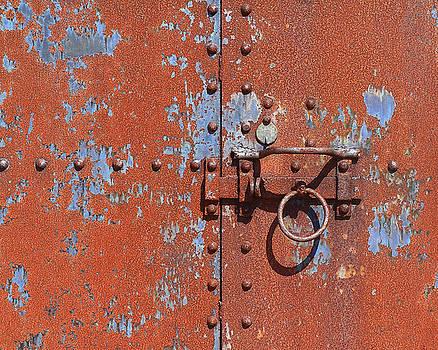 Rusty door by Brian Pflanz